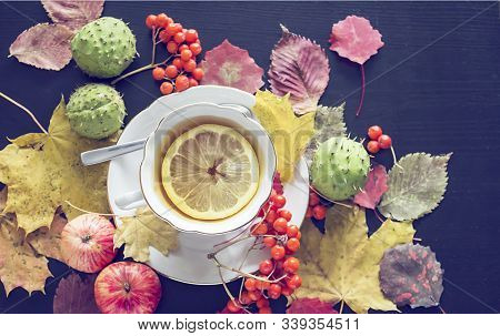 Cup Of Tea, Autumn Leaves And Rowanberry.
