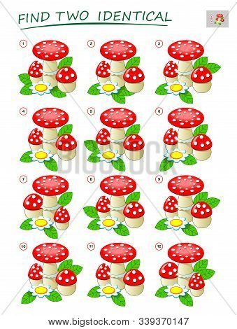 Logic Puzzle Game For Children And Adults. Need To Find Two Identical Mushrooms. Printable Page For