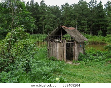 Old Wooden Hut Near The Lake In The Forest. Wooden Cabin Standing Among  Trees In Forest During The