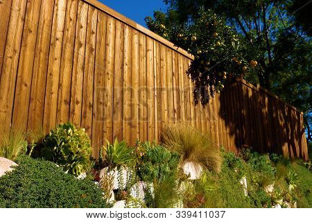 Contemporary Wooden Fence Besides Plants And Flowers Taken At A Garden In A Residential House