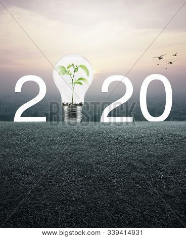2020 With Light Bulb And Small Plant Inside Over Green Grass Field And Aerial View Of Cityscape At S
