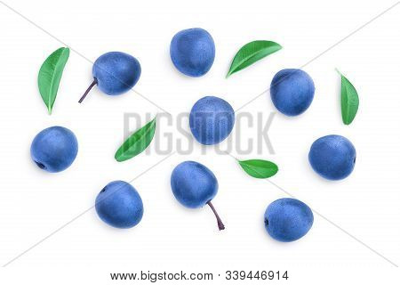 Blackthorn Or Sloe Berries With Leaves Isolated On White Background. Prunus Spinosa. Top View. Flat