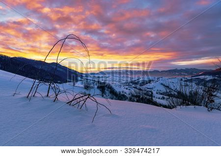 Mountainous Countryside In Winter At Dawn. Snow Covered Hills And Fields Of Carpathian Rural Area Ro