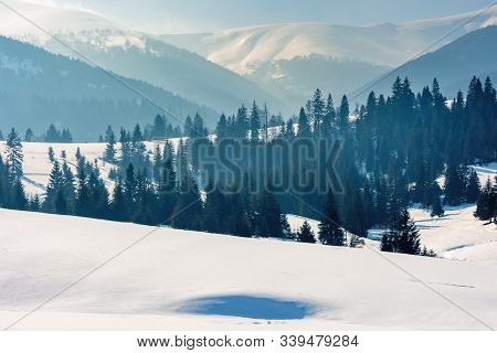Mountainous Landscape In Wintertime. Gorgeous Scenery On A Bright Sunny Day. Spruce Forest On Snow C