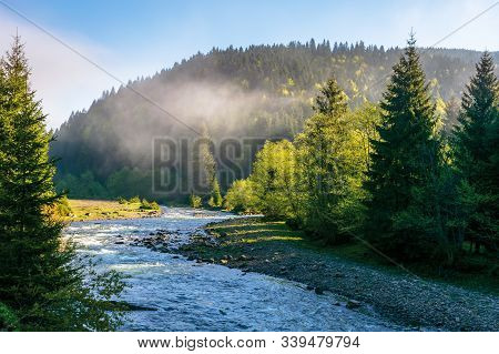 Mountain River Among The Forest. Wonderful Nature Scenery On A Misty Sunrise In Springtime. Waters O