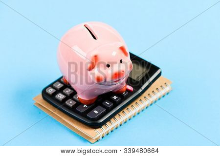 Accounting Business. Piggy Bank Symbol Of Money Savings. Accounting Software. Finances And Investmen