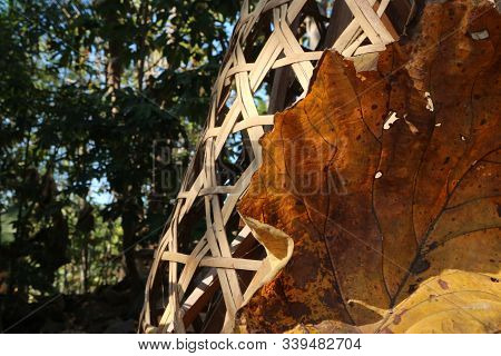 Dry Teak Leaves Next To Bamboo Baskets, The Texture Of The Teak Leaves Is Hollow And There Are Patch