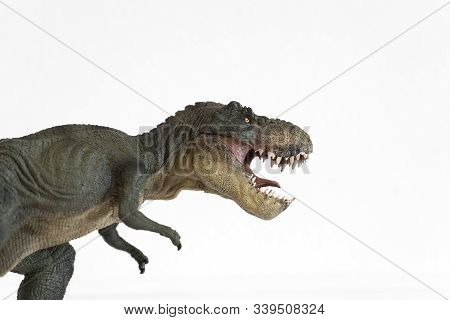 Portrait Of A Tyrannosaurus Rex With Open Mouth Isolated On White Background