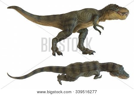 Tyrannosaurus Rex Isolated On White Background In Different Views. Top And Lateral View