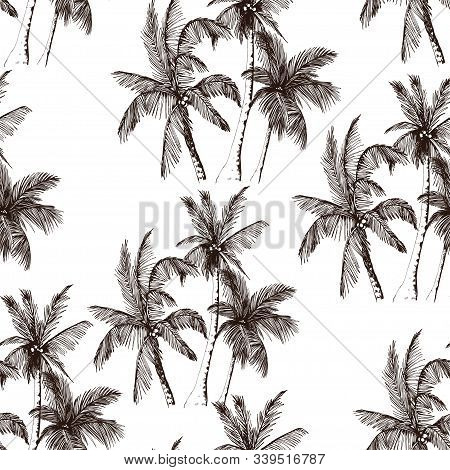 Seamless Pattern With Tropical Palm Trees. Sketchy Rainforest Isolated On White Background. Hand Dra
