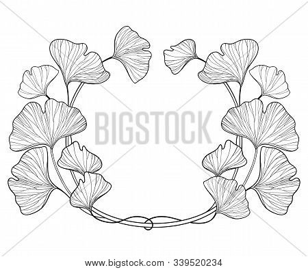Vector Round Frame With Outline Gingko Or Ginkgo Biloba Leaves. Bunch With Ornate Leaf In Black Isol