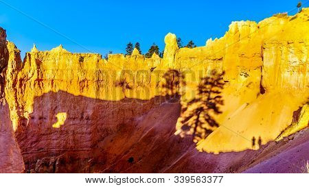 Sunrise Over The Vermilion Colored Hoodoos Along The Navajo Trail In Bryce Canyon National Park, Uta
