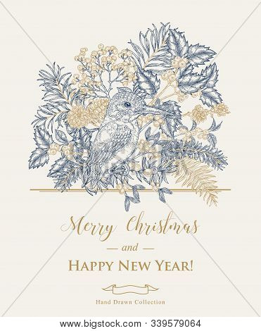 Christmas Card With A Kingfisher Bird And Winter Plants. Hand Drawn King Fisher, Holly Branch, Junip