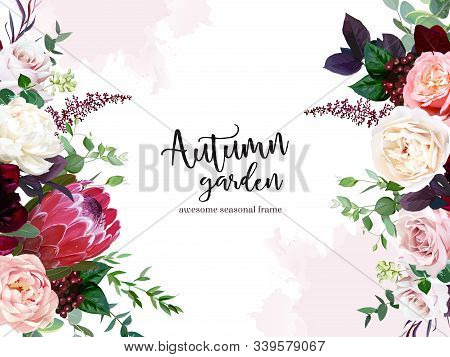 Luxury Fall Flowers Vector Design Frame. Protea Flower, Peachy Coral Garden Rose, Burgundy Red Peony