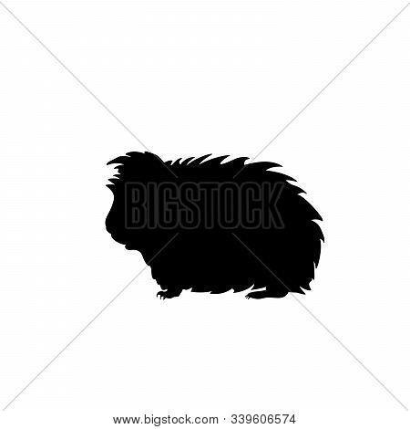 Silhouette Guinea Pig. Domestic Animal Rodent. Vector Illustrator