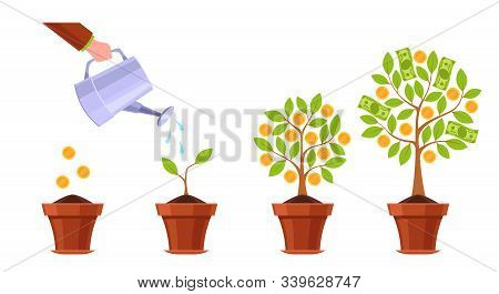 Hand Watering Money Tree. Financial Plant, Golden Flowers Coins. Growth Investitions Process, Prospe