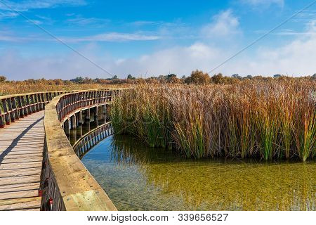Tablas De Daimiel National Park, Biosphere Reserve Since 1981, Castilla La Mancha, Spain