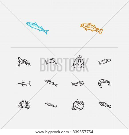 Fauna Icons Set. Crab And Fauna Icons With Sea Turtle, Cod Fish And Atlantic Bottlenose Dolphin. Set