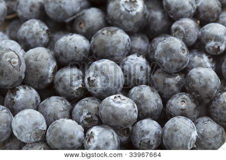 Food Backgrounds: Juicy Blueberries