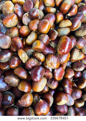Hazelnuts. Background Made Of Nuts. Photowall-paper. Organic Background.