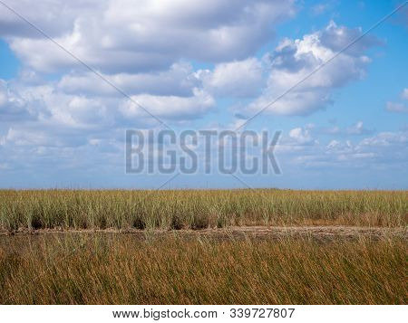 Everglades Grass And Blue Sky With Clouds In Everglades National Park, Florida, Usa
