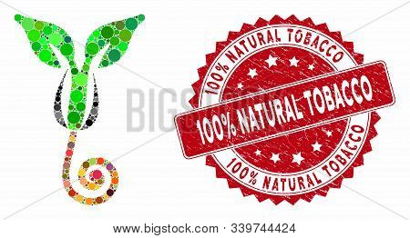 Mosaic Plant Sprout And Rubber Stamp Seal With 100 Percent Natural Tobacco Text. Mosaic Vector Is Cr