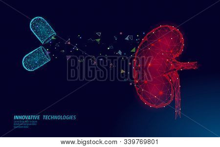 Human Kidneys Medicine Treatment Concept. Medical Help Therapy Treatment. Urinary System Cancer Abdo