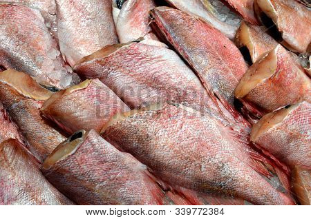 Sea Perch - Headless Fish For Sale At The Market, Raw Fresh Fish With Red Scales, Fish Pattern, Cook