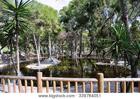 Lake In The Reina Sofia Dunes Park Of Guardamar Del Segura Beach, Alicante. Spain. Europe.