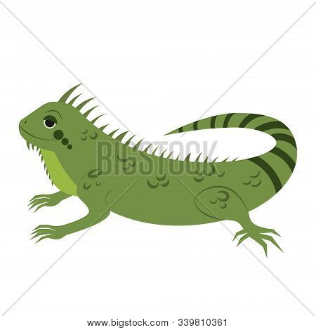 Cartoon Iguana. Vector Illustration On A White Background. Drawing For Children.