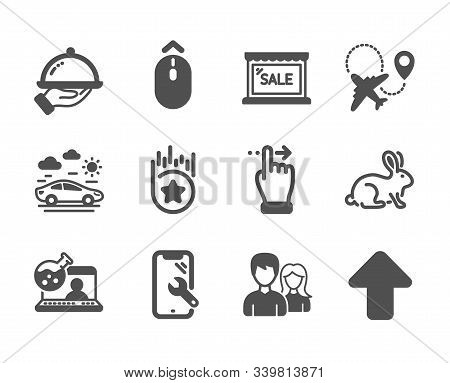 Set Of Business Icons, Such As Smartphone Repair, Swipe Up, Couple, Online Chemistry, Animal Tested,