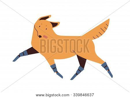 Dog With Prosthetics Legs Flat Vector Illustration. Disabled Domestic Animal With Artificial Limbs.