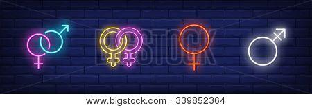 Gender Identity Neon Sign Set. Heterosexual, Gay Couple, Female Symbols. Vector Illustration In Neon