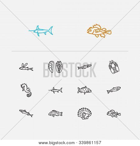 Aquatic Icons Set. Salmon And Aquatic Icons With Swordfish, Seafood And Marine Brush Fish. Set Of Un