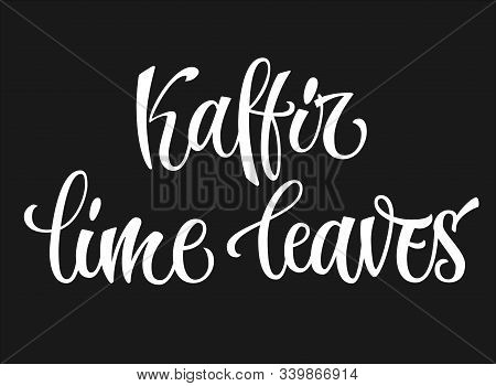 White Colored Hand Drawn Spice Label - Kaffir Lime Leaves. Isolated Calligraphy Scrypt Stile Word. V