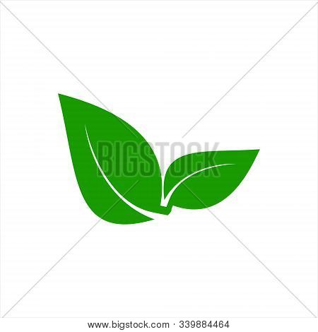 Leaf Icon Vector, Leaf Icon, Leaf Icon Eps10, Leaf Icon Eps, Leaf Icon Jpg, Leaf Icon Picture, Leaf