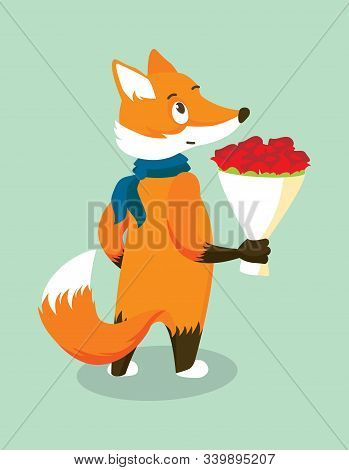 Anthropomorphic Red Fox In A Blue Scarf With A Bouquet Of Red Roses. Isolated Character On Turquoise