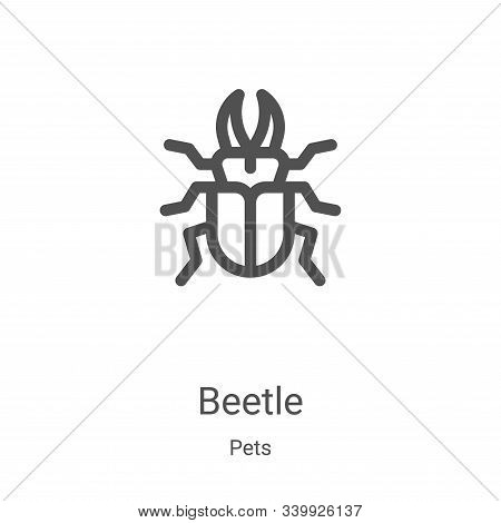 beetle icon isolated on white background from pets collection. beetle icon trendy and modern beetle