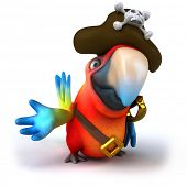 Parrot pirate poster