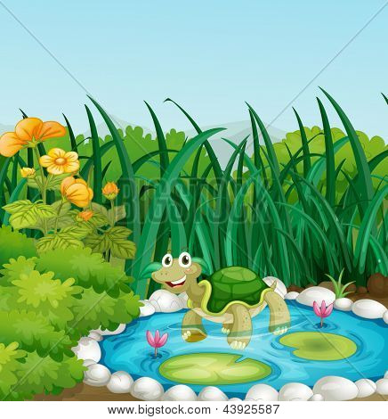 Illustration of a turtle in the pond with waterlilies