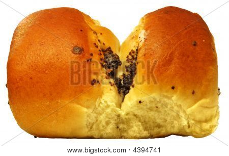 Erotic Papaverous Bun