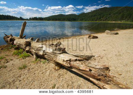 Log And Lake