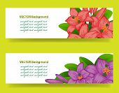 bannner with orchids, floral vector background. This is file of EPS10 format. poster