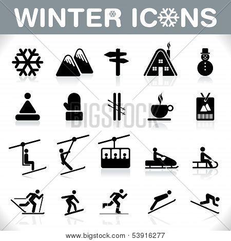 Conjunto de iconos - Vector del invierno