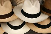 Handmade Panama Hats in a variety of colors for sale at the outdoor craft market in Otavalo, Ecuador poster