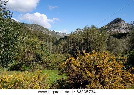 Mountain landscape, Marbella, Spain.