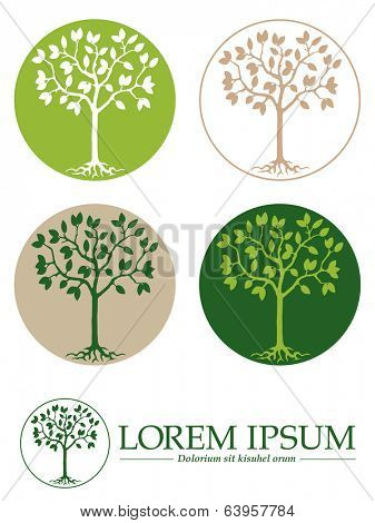 Vector Tree Symbols Template. Tree with roots in circle design template, five variations