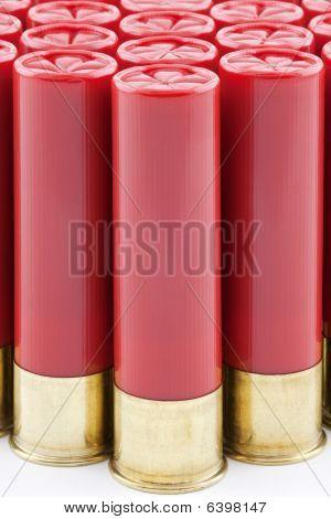 Red Shotgun Shells Lined Up