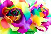 handicraft  fabric flower that made as  fake colorful rose poster
