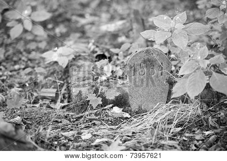 An Old Gravestone In The Cemetery
